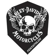 Harley Davidson Skull with wings