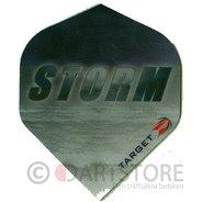 Pro 100 Storm