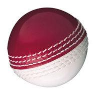 Gunn & Moore Skills Ball Red/White Senior